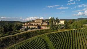 Sicily Vineyards